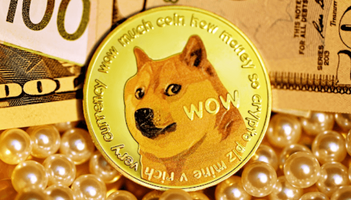 Meme Coins vs. Real Coins.  Should You Invest in Doge?
